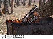 Купить «Горят Угли в мангале», фото № 822208, снято 19 апреля 2009 г. (c) Дятлов Антон / Фотобанк Лори
