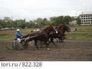 Старт заезда на рыжих лошадях (2008 год). Редакционное фото, фотограф Любовь Похабова / Фотобанк Лори