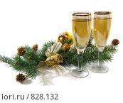 Купить «Новогодняя композиция», фото № 828132, снято 15 января 2009 г. (c) Елена Завитаева / Фотобанк Лори