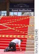 Купить «Красная ковровая дорожка. Дворец Фестивалей в Каннах, Франция», фото № 829640, снято 15 апреля 2009 г. (c) Владимир Мельник / Фотобанк Лори