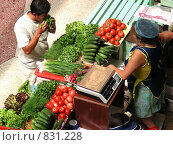 Купить «Рынок. Покупатель выбирает овощи.», фото № 831228, снято 7 июля 2008 г. (c) Александр Подшивалов / Фотобанк Лори