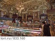 Купить «Интерьер Елисеевского магазина в Москве», эксклюзивное фото № 833160, снято 26 апреля 2009 г. (c) Виктор Тараканов / Фотобанк Лори