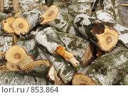Березовые дрова. Стоковое фото, фотограф Сергей / Фотобанк Лори