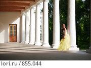 Купить «Красивая невеста среди колонн», фото № 855044, снято 3 июля 2008 г. (c) Astroid / Фотобанк Лори