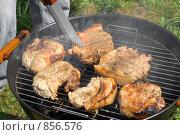 Купить «Приготовление мяса на гриле», фото № 856576, снято 9 мая 2009 г. (c) Миняева Ольга / Фотобанк Лори