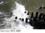 Холодное Балтийское море. Стоковое фото, фотограф Елена Колтыгина / Фотобанк Лори