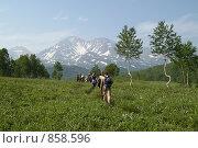 Купить «Туристическая группа на Камчатке», фото № 858596, снято 4 августа 2006 г. (c) Кузнецов Андрей / Фотобанк Лори