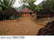 Деревня племени папуасов провинции Ириан Джай (2007 год). Стоковое фото, фотограф Александр Киселев / Фотобанк Лори