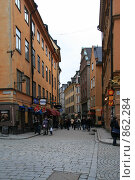 Купить «Городской пейзаж (г. Стокгольм. Швеция)», фото № 862284, снято 15 марта 2009 г. (c) Александр Секретарев / Фотобанк Лори
