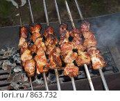 Купить «Жареный шашлык на шампурах», фото № 863732, снято 19 августа 2006 г. (c) Примак Полина / Фотобанк Лори