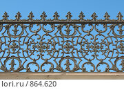 Купить «Фрагмент чугунной ограды дома Дубянских на набережной Фонтанки. Санкт-Петербург», фото № 864620, снято 2 мая 2009 г. (c) Заноза-Ру / Фотобанк Лори