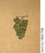 Изображение винограда на стене. Стоковое фото, фотограф Александр Завгородний / Фотобанк Лори