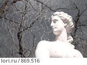 Купить «Мраморная статуя», фото № 869516, снято 3 мая 2009 г. (c) Юрий Винокуров / Фотобанк Лори