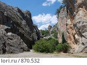 Купить «Крым, Никита», фото № 870532, снято 31 июля 2008 г. (c) Смыгина Татьяна / Фотобанк Лори