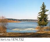 Купить «Весенний пейзаж», фото № 874732, снято 26 апреля 2009 г. (c) Liseykina / Фотобанк Лори