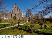 Монастырь святой Бригитты (2009 год). Стоковое фото, фотограф Андрей Григорьев / Фотобанк Лори