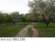 """Весна. Парк """"Северное Тушино"""", Москва (2009 год). Стоковое фото, фотограф Николай Коржов / Фотобанк Лори"""