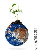 Купить «Молодой побег на планете», фото № 886584, снято 24 февраля 2018 г. (c) Jan Jack Russo Media / Фотобанк Лори