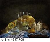 Купить «Лимонад», фото № 887768, снято 2 февраля 2009 г. (c) Ирина Гусева / Фотобанк Лори