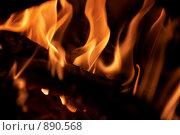 Огонь. Стоковое фото, фотограф Виктор Мухин / Фотобанк Лори