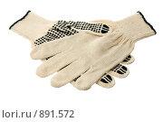 Купить «Две перчатки», фото № 891572, снято 28 мая 2009 г. (c) Игорь Веснинов / Фотобанк Лори