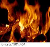 Купить «Огонь», фото № 901464, снято 21 мая 2009 г. (c) Миронова Евгения / Фотобанк Лори