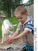 Купить «Мальчик моет руки», эксклюзивное фото № 907784, снято 6 июня 2009 г. (c) Мария Зубарева / Фотобанк Лори