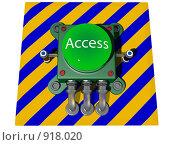 Купить «Кнопка ACCESS», иллюстрация № 918020 (c) Геннадий Соловьев / Фотобанк Лори