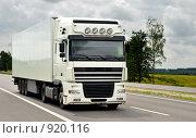 Купить «Грузовой автомобиль», фото № 920116, снято 3 июня 2009 г. (c) Дмитрий Калиновский / Фотобанк Лори