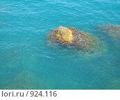 Камень в морской воде. Стоковое фото, фотограф Грубова Наталья / Фотобанк Лори