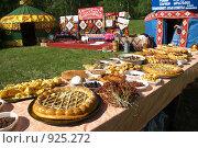 Купить «На празднике сабантуй», фото № 925272, снято 6 июня 2009 г. (c) Талдыкин Юрий / Фотобанк Лори