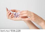 Руки с красивым маникюром. Стоковое фото, фотограф Ирина Золина / Фотобанк Лори