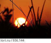 Купить «Закат», фото № 936144, снято 21 июня 2009 г. (c) Газизов Ильнар / Фотобанк Лори