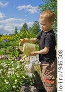 Мальчик поливает цветы на дачном участке. Стоковое фото, фотограф Надежда Щур / Фотобанк Лори