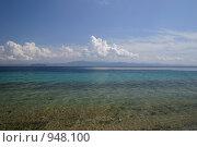 Греция. Полуостров Ситония (2007 год). Стоковое фото, фотограф Дмитрий Кашканов / Фотобанк Лори