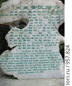 Купить «Каменная табличка с китайскими иероглифами и английским переводом», фото № 957824, снято 7 сентября 2008 г. (c) Анжелина Селинская / Фотобанк Лори