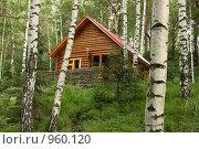 Купить «Деревянный дом в лесу», фото № 960120, снято 28 июня 2009 г. (c) Сычёва Виктория / Фотобанк Лори