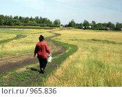 Сельская дорога. Стоковое фото, фотограф Лариса Патракеева / Фотобанк Лори