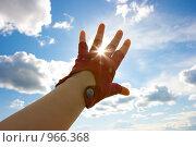 Купить «Сквозь пальцы», фото № 966368, снято 22 мая 2009 г. (c) Татьяна Гришина / Фотобанк Лори