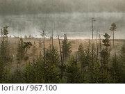 Туманное берег озера. Стоковое фото, фотограф Кекяляйнен Андрей / Фотобанк Лори