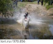 Купить «Прохождение водной преграды», фото № 970856, снято 4 июля 2009 г. (c) Коротеев Сергей / Фотобанк Лори