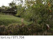 Деревня папуасов в провинции Ириан Джай (2007 год). Стоковое фото, фотограф Александр Киселев / Фотобанк Лори