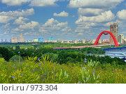 Купить «Панорама Москвы, включающая Живописный мост», фото № 973304, снято 11 июля 2009 г. (c) Fro / Фотобанк Лори