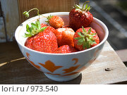 Купить «Сочная клубника», фото № 973540, снято 7 июля 2009 г. (c) Алексей Росляков / Фотобанк Лори