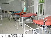 Купить «Родовой зал», эксклюзивное фото № 978112, снято 15 июля 2009 г. (c) Катерина Белякина / Фотобанк Лори