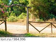 Ограда. Стоковое фото, фотограф Екатерина Душенина / Фотобанк Лори