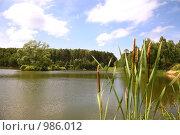 Купить «Лесное озеро», эксклюзивное фото № 986012, снято 29 июня 2009 г. (c) Наталья Волкова / Фотобанк Лори
