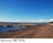 Летний береговой пейзаж. Стоковое фото, фотограф Татьяна Князева / Фотобанк Лори
