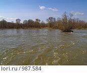 Купить «Высокая вода. Паводок. Река Уссури, Россия.», фото № 987584, снято 16 апреля 2009 г. (c) Олег Рубик / Фотобанк Лори