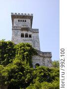 Купить «Смотровая башня на горе Ахун (663 м),арх. С.И.Воробьев», фото № 992100, снято 12 июля 2009 г. (c) Татьяна Дигурян / Фотобанк Лори